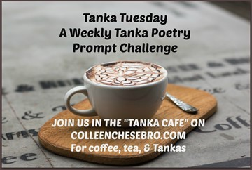 tanka-tuesdays